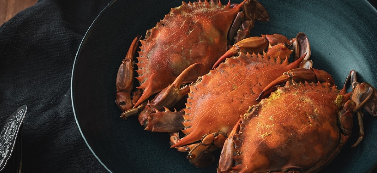 Horseradish Crab Dip