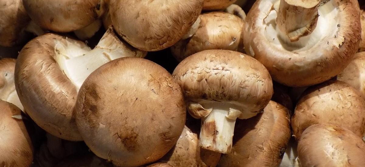 Easy Cream of Mushroom Soup