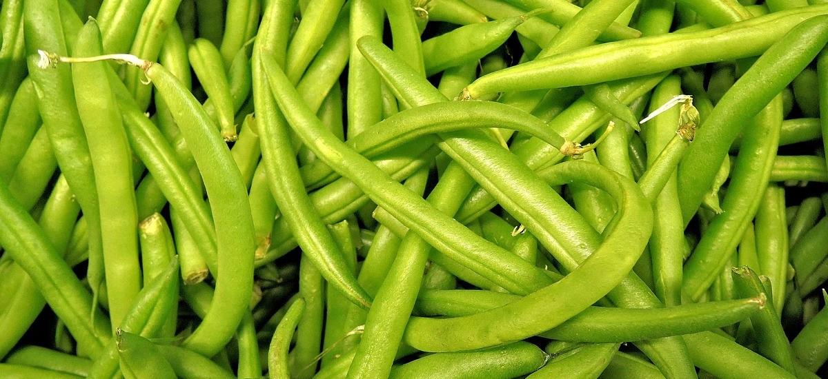 Sausage and Green Bean Pasta Skillet