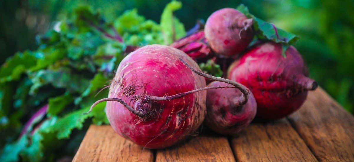 Quick and Easy Pickled Beets